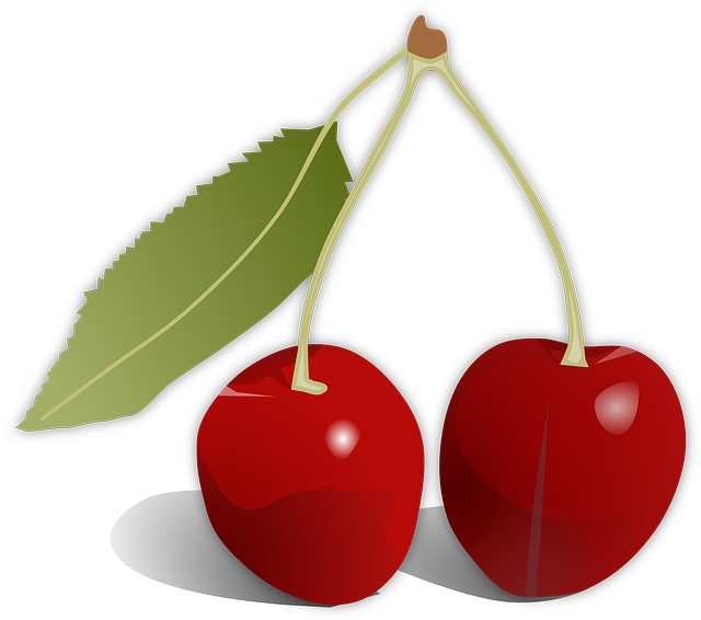Free vector graphic: Cherries, Leaf, Fruit, Food, Red - Free Image on Pixabay - 154483 (875)