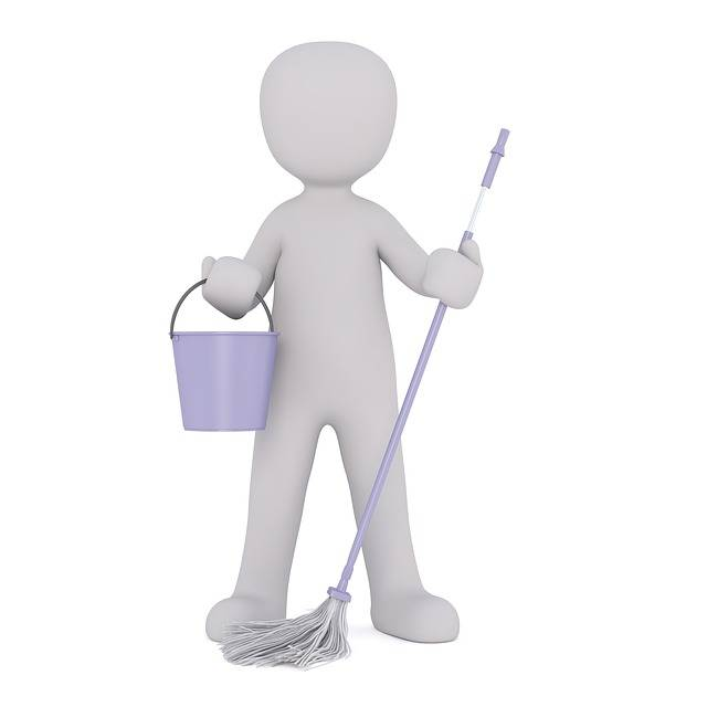 Free illustration: Cleaning Lady, Cleaner, Clean - Free Image on Pixabay - 1816361 (3763)