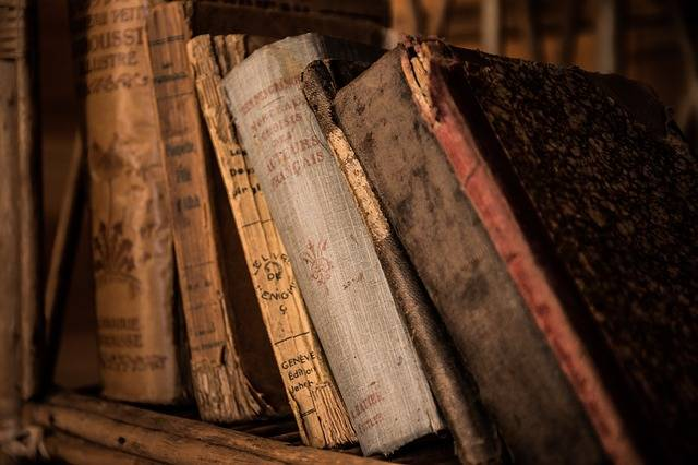 Free photo: Old Books, Book, Old, Library - Free Image on Pixabay - 436498 (6020)